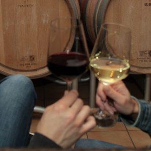 Weinkeller der WeinWerkstatt